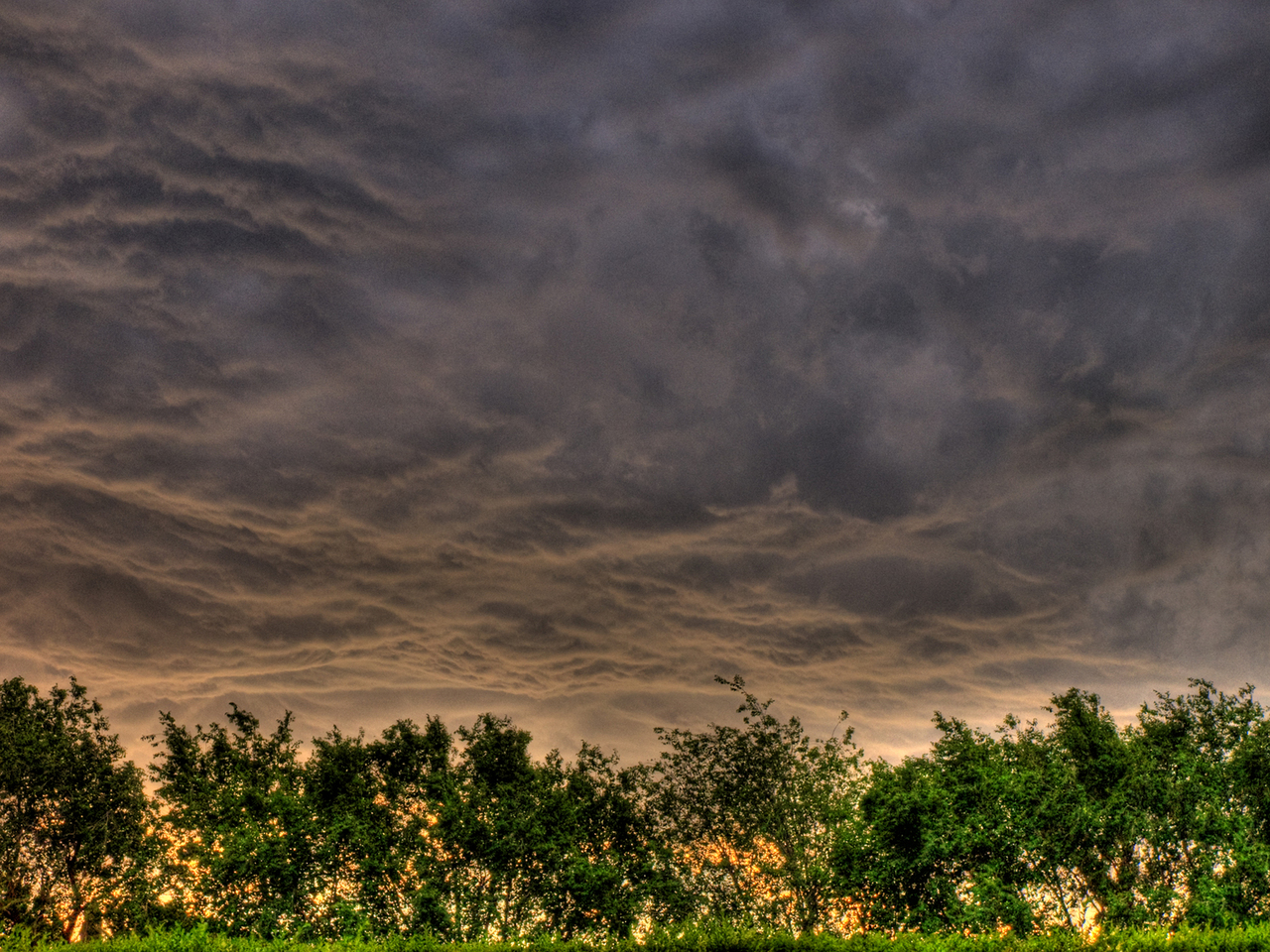 Foto de nubes oscuras sobre un horizonte brillante con árboles
