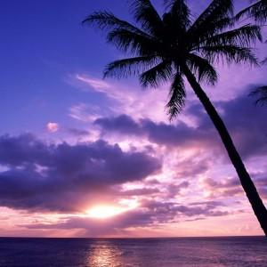 Paraíso: Una foto de Tahití