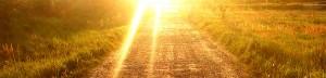 Como superar una decepción amorosa - Un futuro brillante
