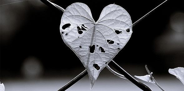 Como superar una decepción amorosa